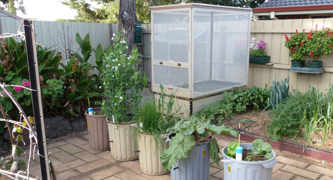 Wicking worm beds Sustainable Gardening Australia