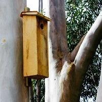 Building Homes for Wildlife @ Edendale Community Environment Farm | Eltham | Victoria | Australia
