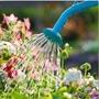 Water Smart Gardening