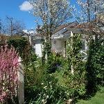 Open Garden - Glen Waverley @ Glen Waverley | Victoria | Australia