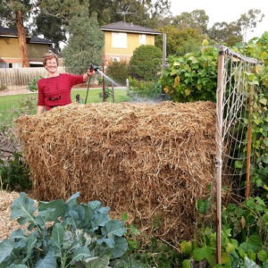 Garden Tour and Workshop - Compost Making @ Nunawading Community Garden (near Basketball Stadium) | Blackburn North | Victoria | Australia