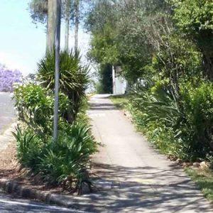 Successful Verge Gardening @ Brisbane, The Gardener's Wall   Yeronga   Queensland   Australia