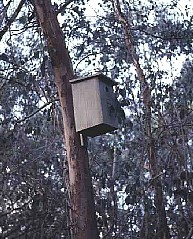 Successful garden nestboxes | Sustainable Gardening Australia