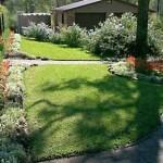 Gallery-Shademaster-in-Shady-Garden