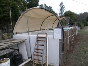 Nirvana compost 1