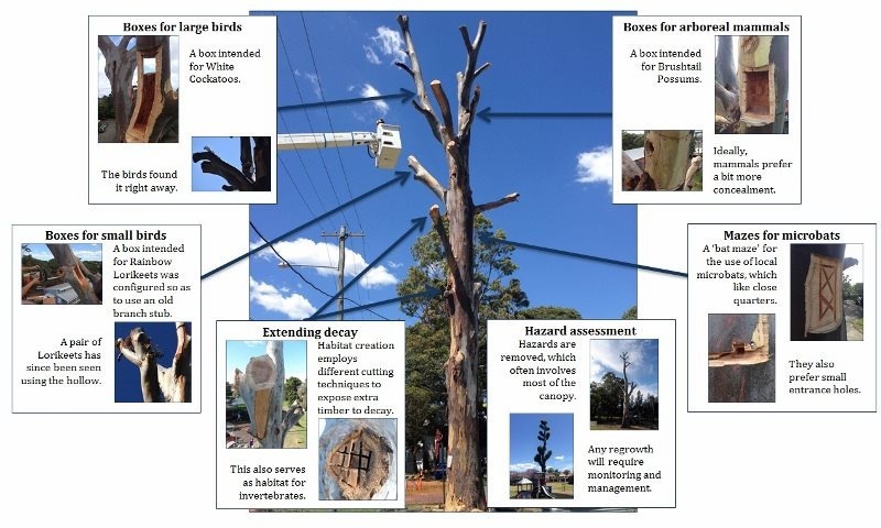 Habitat tree overview (800x480)