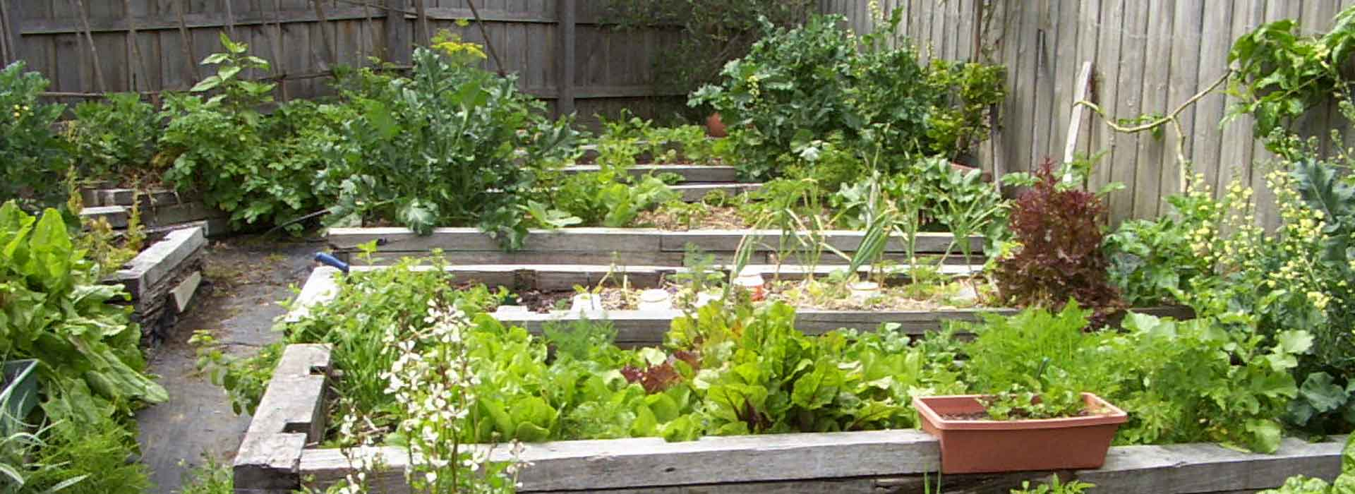 Four Bed Crop Rotation Sustainable Gardening Australia