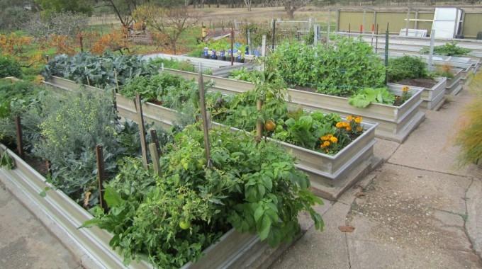 Low impact garden edges | Sustainable Gardening Australia