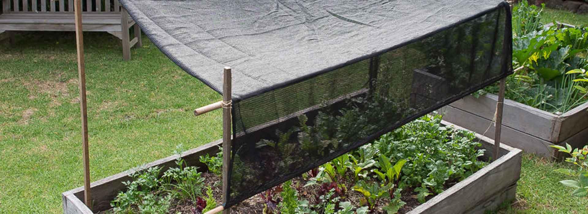 How to make garden shade | Sustainable Gardening Australia