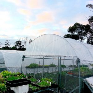 Build your Own Poly/Shade Tunnels @ Private address | Research | Victoria | Australia